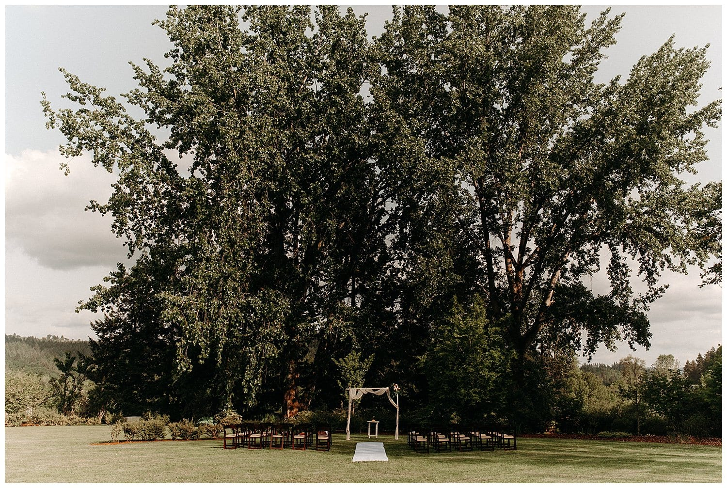 setup at tree for beacon hill wedding